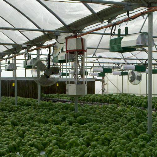 look_at_us-grow_biowave-33